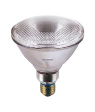 Bulbrite H75PAR38FL 75 Watt 120 Volt Clear PAR38 Halogen Flood Bulb