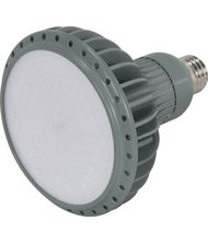 KolourOne S8855 17 Watt 60 Degree Beam Spread Gray LED PAR38