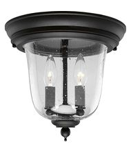 Progress Lighting Ashmore 2 Light Outdoor Flush Mount